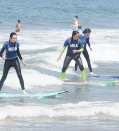 Learn to Surf LA